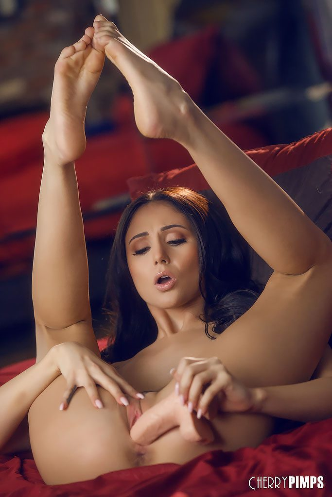 Ariana Marie Latina Pornstar biography information on Babepedia