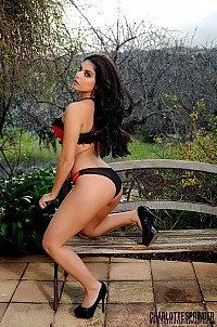 Charlotte Springer gallery image 5 of 12